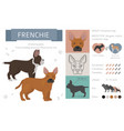 designer dogs crossbreed hybrid mix pooches vector image
