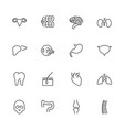 organs- flat line icons vector image