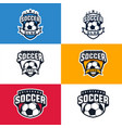 soccer logo template vector image