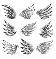 bird wings logo or emblem set vector image vector image