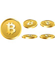 gold bitcoin coins isolated on white vector image