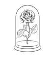 rose under glass cap coloring book vector image