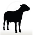 sheep silhouette with standing still pose vector image vector image