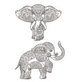 elephant with mandalas vector image