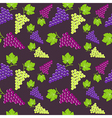 Seamless vintage background with bunch of grapes vector image