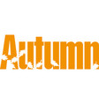 autumn seasonals postes with autumn leaves autumn vector image vector image