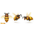 bee bumblebee 3d cartoon icon set plasticine art vector image