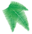 palm branch vector image
