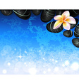 Spa Background with Hot Stones and Flowers vector image vector image