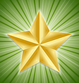 big golden star vector image vector image