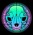 bright animal skull on background vector image