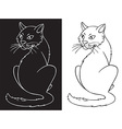 Cat on white and black background vector image vector image