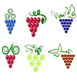 Grapes icons vector image