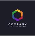 modern colorful hexagon logo icon template vector image
