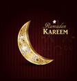 ramadan kareem glittering greeting card vector image