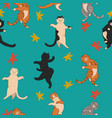 seamless pattern jumping cats and leaf fall vector image
