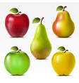 Set of apples and pears vector image