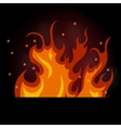 burning fire on a black vector image vector image