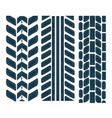 different tire traces on white automobile print vector image