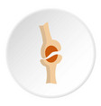 knee joint icon circle vector image