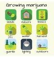 Marijuana growing icon set vector image vector image