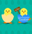 Newborn chicken in the broken egg vector image