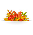 banner autumn background or template card