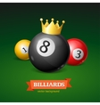 Billiard Balls with Golden Crown vector image vector image