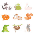 cartoon animal mother and her cub vector image vector image
