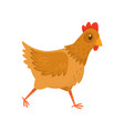 flat icon of running hen chicken with vector image