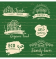 Organic food label and logos set Farm Fresh label vector image vector image