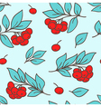 seamless pattern with red rowan berry vector image vector image
