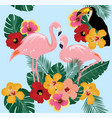 tropical birds vector image vector image