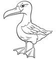 albatross bird animal character cartoon coloring vector image