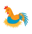 farm rooster sleeping in his nest male domestic vector image vector image