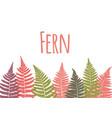 fern leaf background tropical botanical card vector image