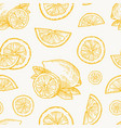 hand drawn lemon orange or tangerine harvest vector image