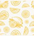 hand drawn lemon orange or tangerine harvest vector image vector image