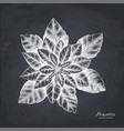 Hand drawn poinsettia
