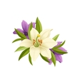 Lilies Hand Drawn Realistic vector image vector image