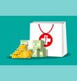 medicine bag and money vector image