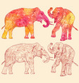 set of elephants with decorative floral pattern vector image