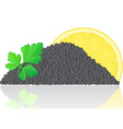 black caviar with lemon vector image vector image