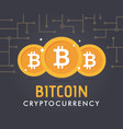 crypto currency bitcoin vector image vector image