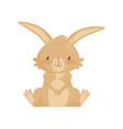 flat icon of adorable brown rabbit bunny vector image vector image
