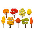 flat set of autumn trees with bright leaves vector image