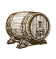 hand drawn wooden wine cask drink oak barrel vector image vector image