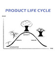product life cycle line on white background vector image