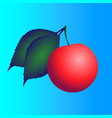 red berry with green leaves vector image vector image