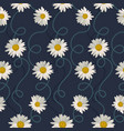 seamless pattern with white daisies vector image